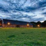 Pferdekoppel am Cromford Park (HDR)